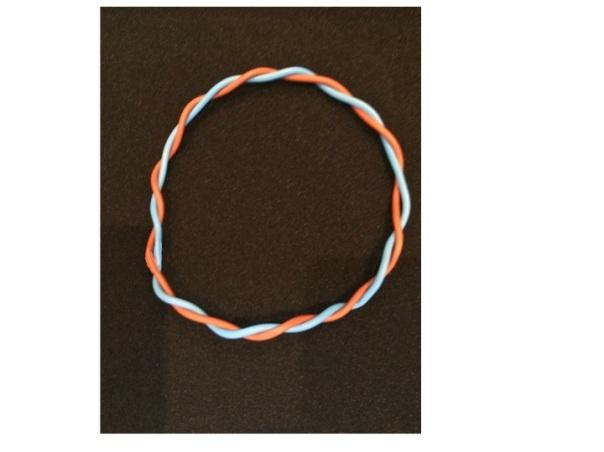 bacterial DNA is circular