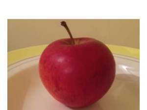 The information for this red apple is coded in the silicon chips of your computer as 0s and 1s, in a particular sequence to allow the screen to form this image. How does it work in your brain?