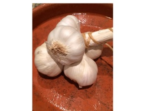 garlic has its characteristic odour because it contains the molecule allicin, which helps protect it from bacteria and insects which want to eat it