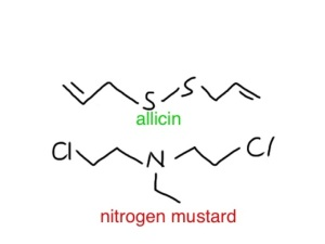 allicin and nitrogen mustard have a similar molecular shape - which is maybe why they have a similar smell